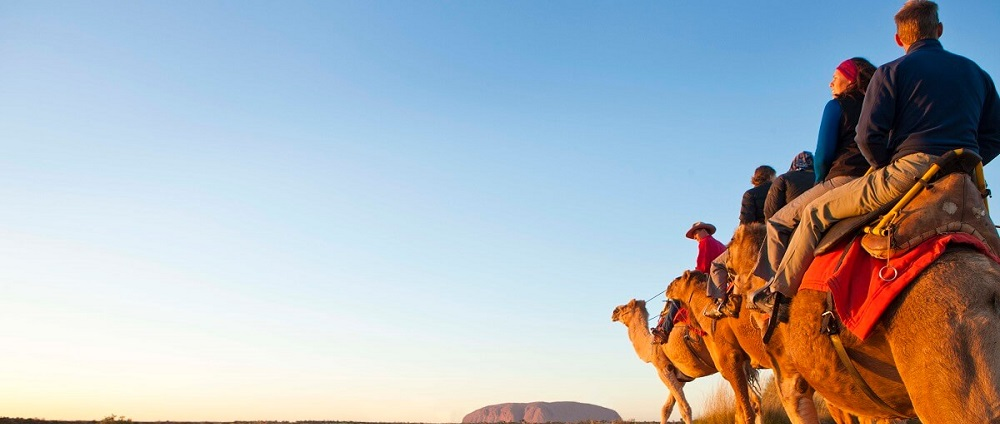Camels and Canyons at Kings Creek Station