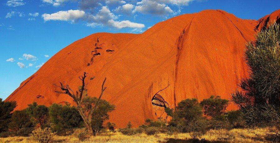 Uluru Day Tours I