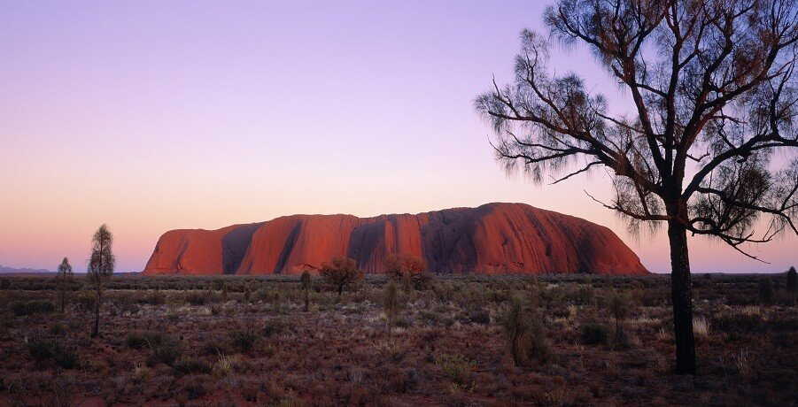 Uluru and Kings Canyon Tour Uluru Sunset I