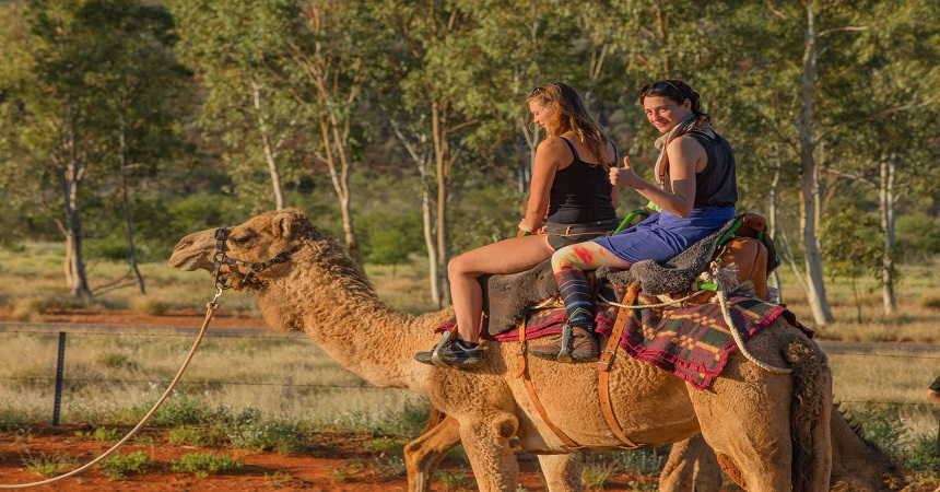 camel rides at kings creek station