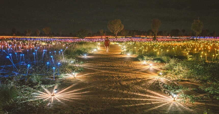 field of light illuminating the desert